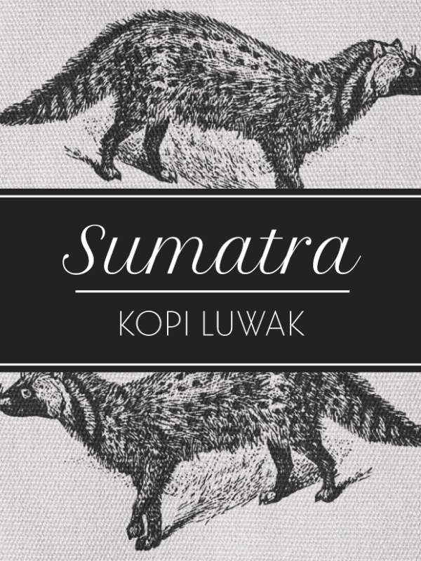 Toscaf Sumatra Kopi Luwak